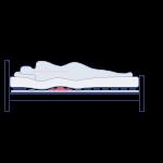 C3. Zero Stress Kit animation